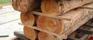 Основные принципы сушки древесины