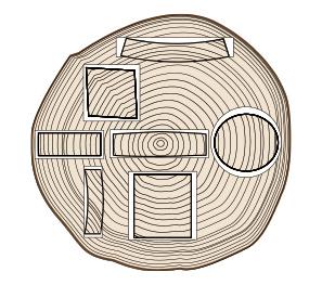 木取りによる断面変形の模式図